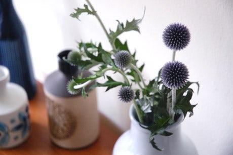 お花と香り。