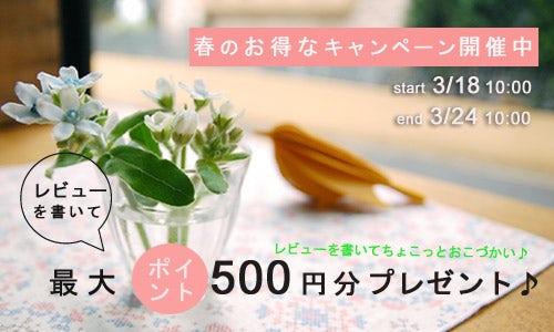 レビューを書いて!最大500円分ポイントプレゼント♪