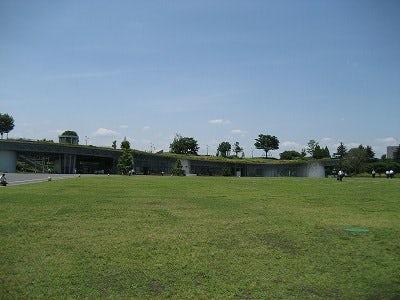昭和記念公園と麦わらぼうし